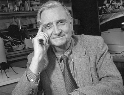 "biological psychology and edward osborne wilson E o wilson edward osborne wilson, more commonly known as e o wilson, is an american biologist who is widely considered to be the world's leading authority on ants one of the leading figures in sociobiology, he is often dubbed as ""the father of sociobiology."